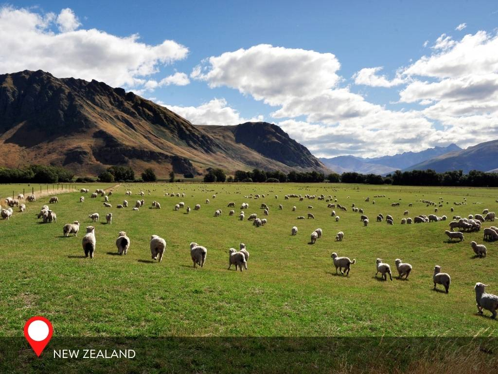 south island new zealand, best place to go on vacation