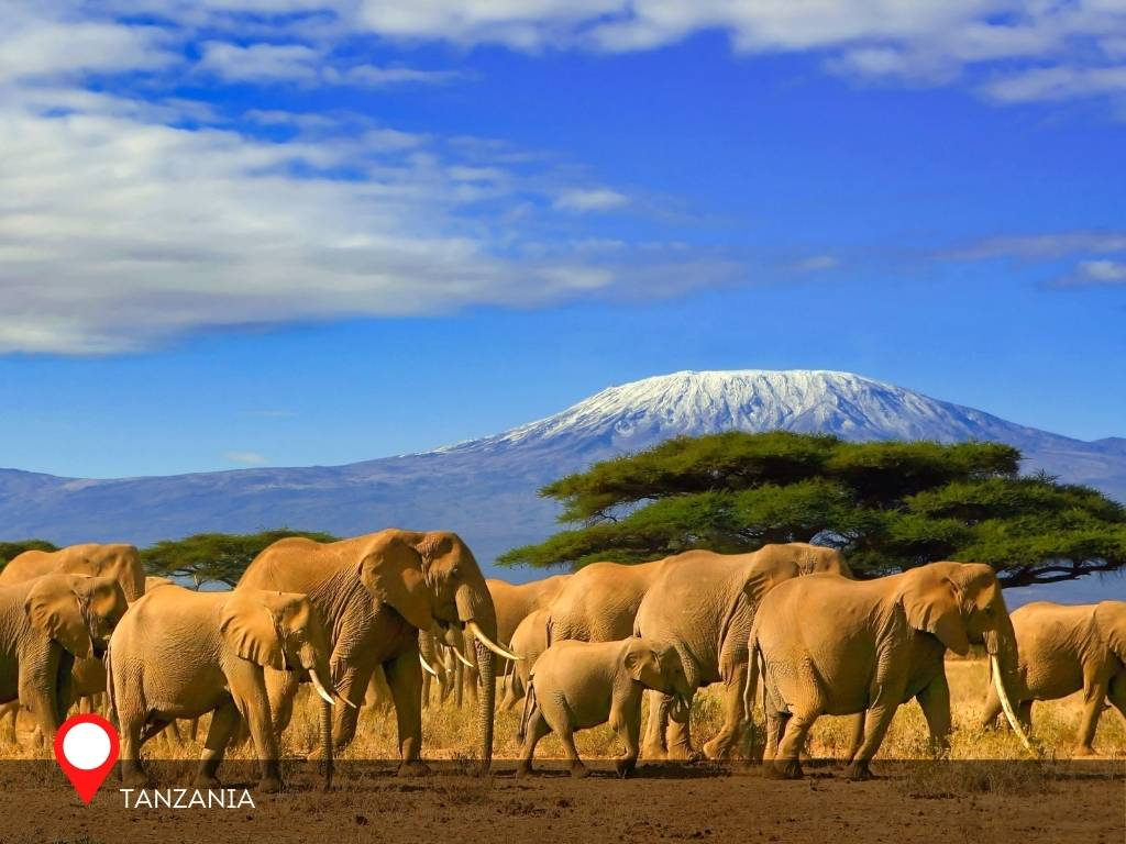 tanzania, best place to go on vacation