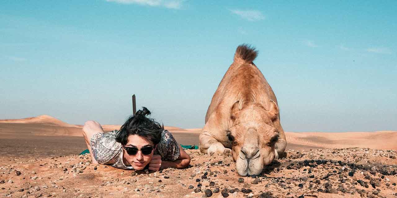 man, camel