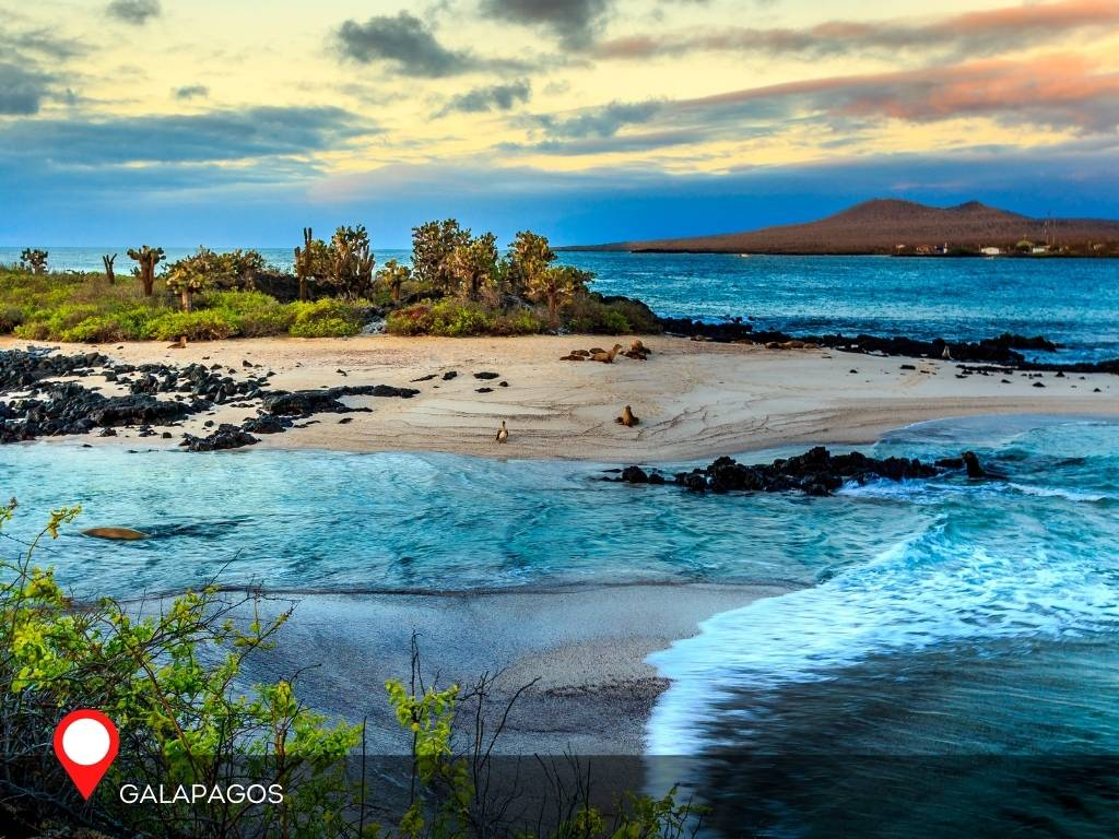 galapagos, best place to go on vacation