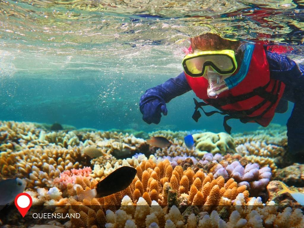 great barrier reef, best place to go on vacation