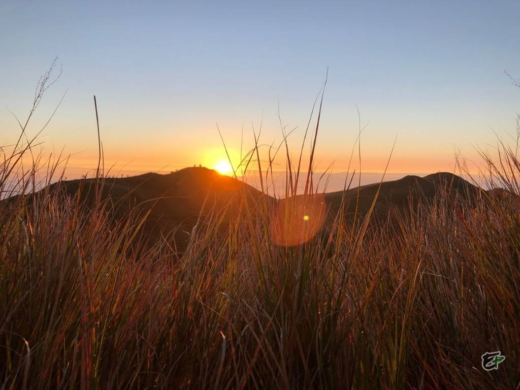 Incomparable Sight in Mount Pulag