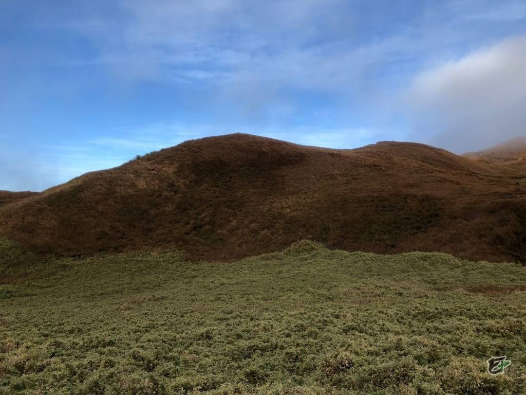 Short Clearing, Mount Pulag