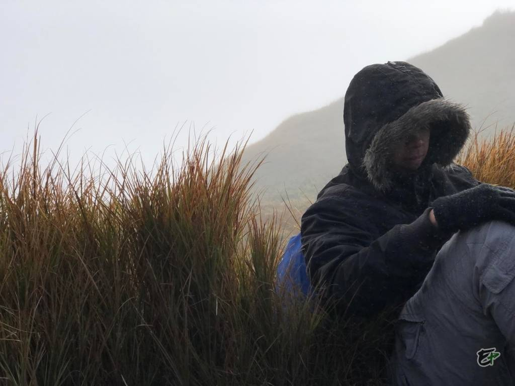 Water droplets, Mount Pulag