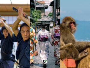 Japan - Things to do in Kyoto not temple