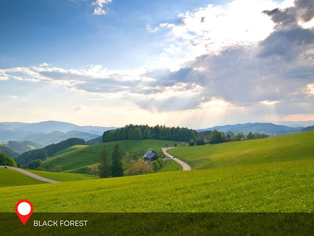 Black Forest Scenic Road