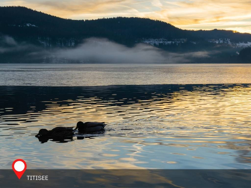 Lake Titisee, Morning, Black Forest, Germany